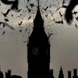 モノクロの時計台とカラス